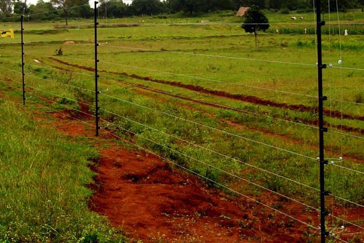 Tips on smart livestock and animal fencing